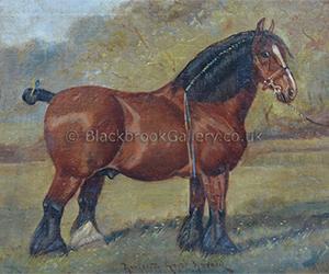 Markeaton Royal Harold by William Albert Clark