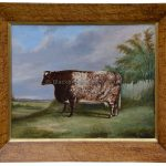 The Red Roan Shorthorn Cow By James Clark