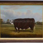 Prize hereford steer in front of warwick castle antique animal paintings