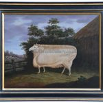 Prize Leicester Ewe By T. Yeomans