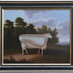 Prize Ram By Artist T. Yeomans
