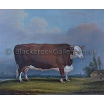 2017-03-21-the-celebrated-hereford-bull-trojan-watermark-300[1]
