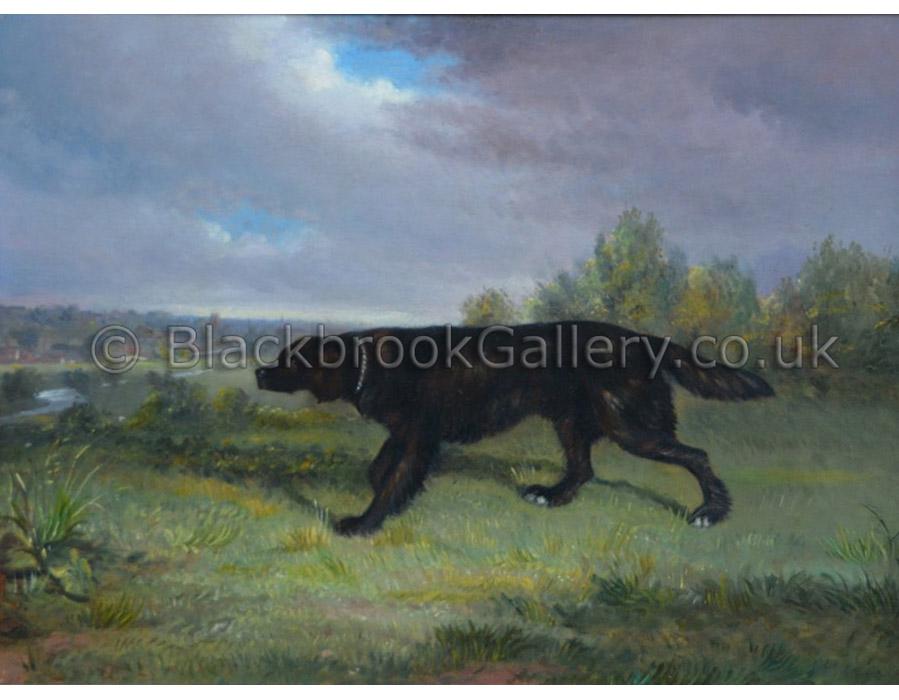 Flat coat retriever antique animal paintings
