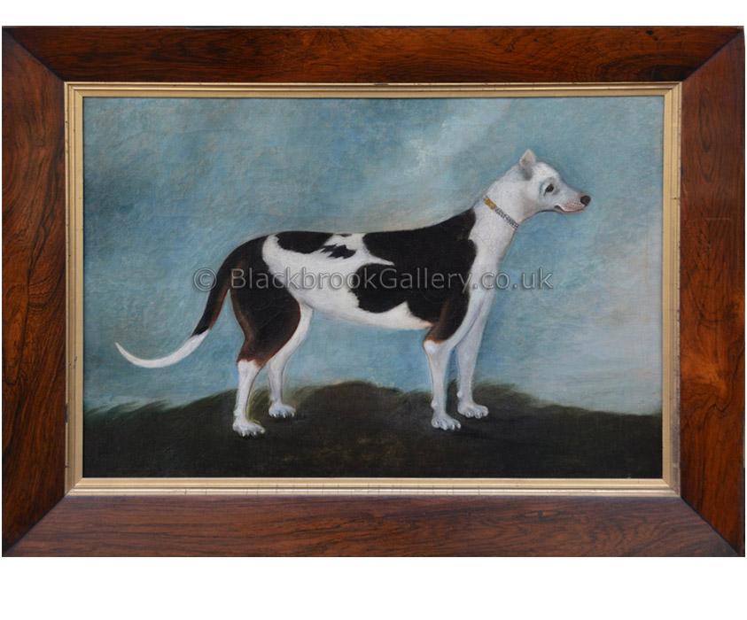 Naive sporting dog antique animal portrait