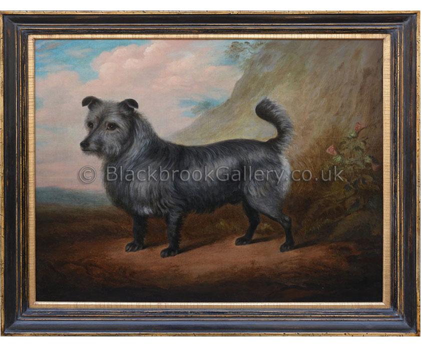 Skye terrier antique animal portrait