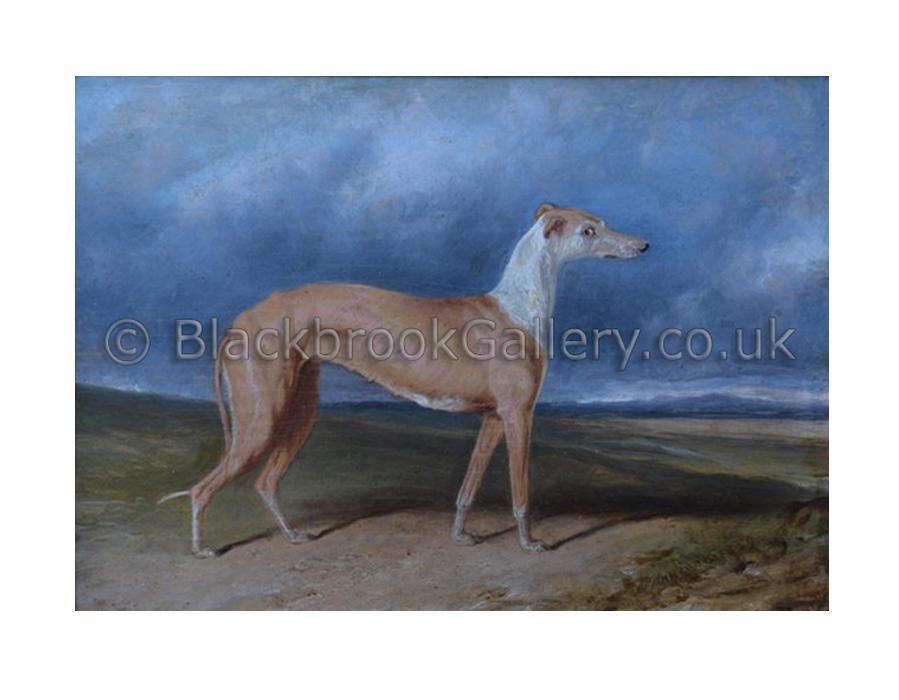 Stella greyhound by C. Hancock antique animal paintings