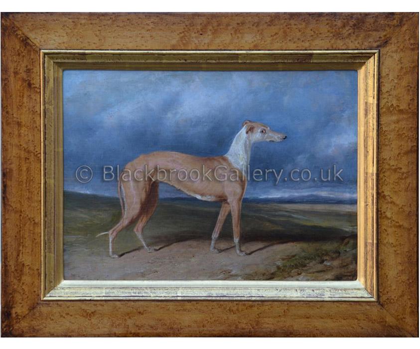 Stella greyhound by C. Hancock antique animal portrait