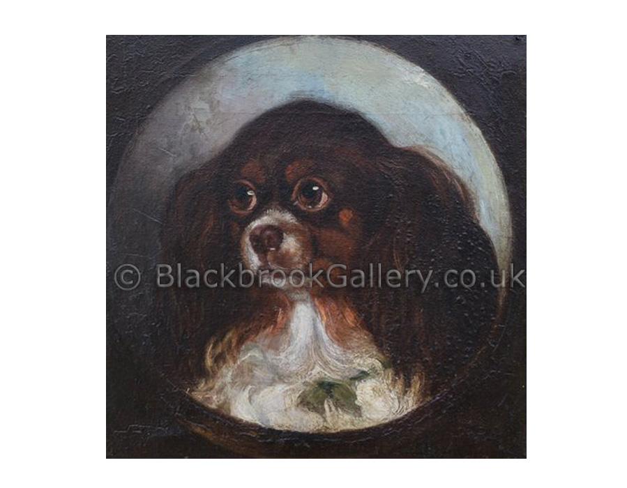 Study of king charles spaniel by Benjamin Waterhouse Hawkins antique animal paintings