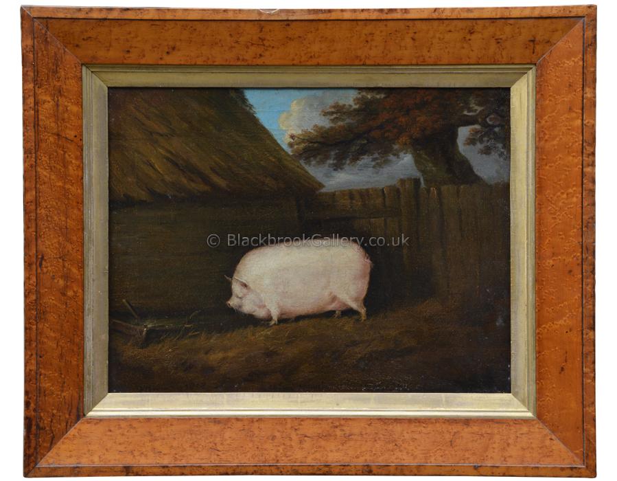 Prize Pig, N. Barton, Antique Animal Portrait