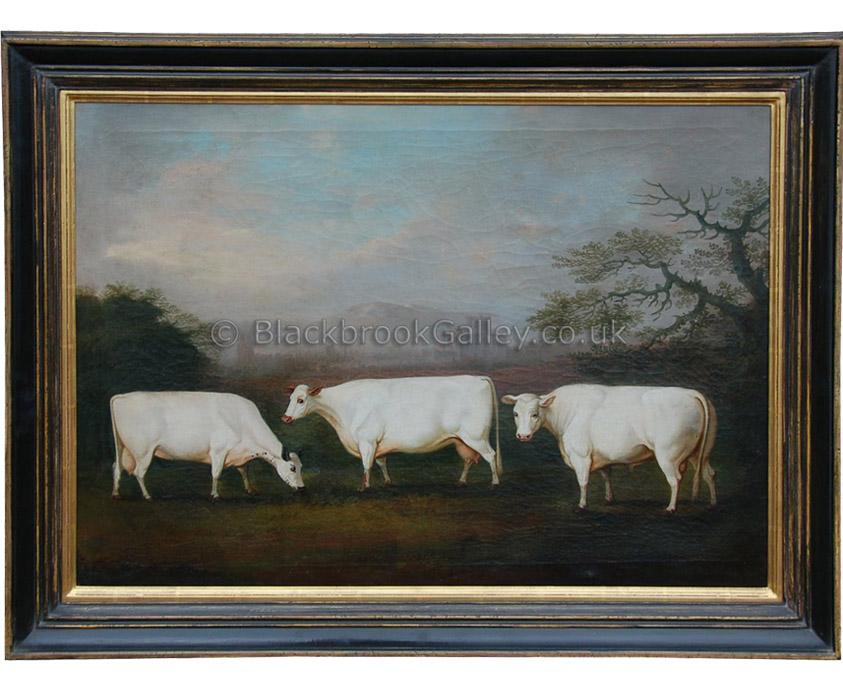 British whites by Daniel Clowes antique animal portrait