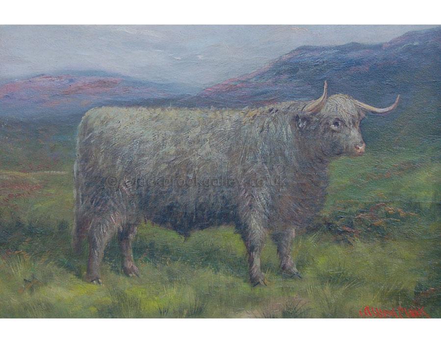 Highland steer by Albert Clarke antique animal paintings