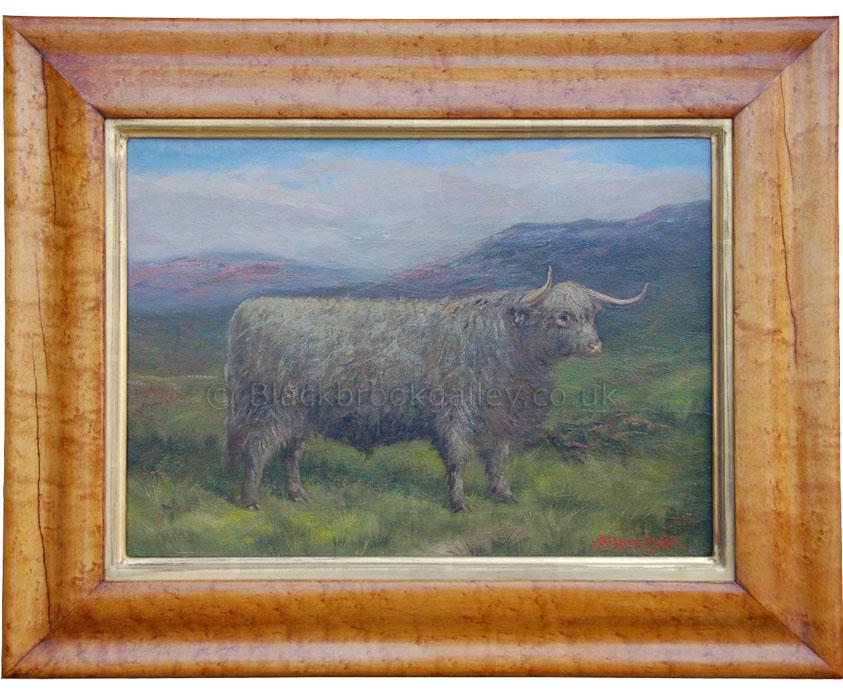 Highland steer by Albert Clarke antique animal portrait
