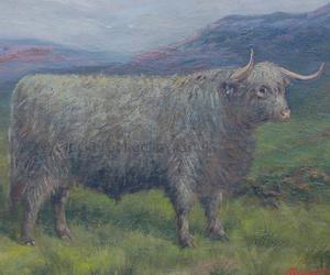 Highland steer by Albert Clarke naive animal paintings