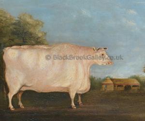 Naive shorthorn heifer by S. Kirk naive animal paintings