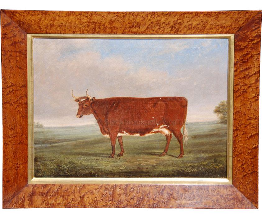 Norfolk cow by Englis School antique animal portrait