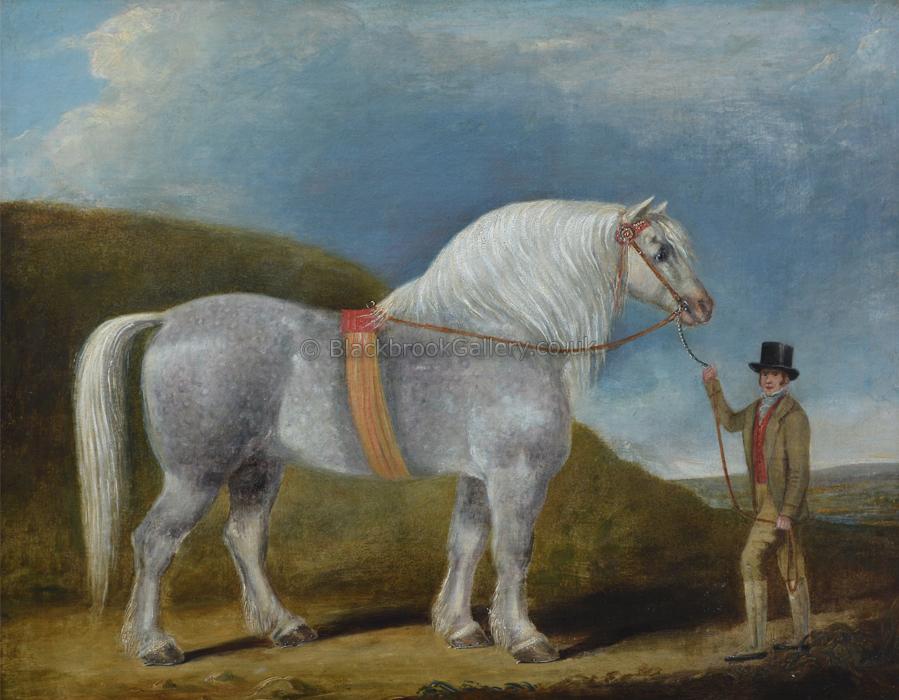 Prize Winning Stallion, Antique Animal Painting