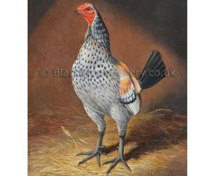 English Game Cock - Fig Pudding by Herbert Atkinson naive animal paintings