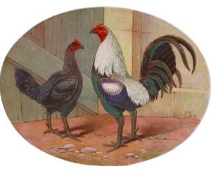 Game Cock & Hen