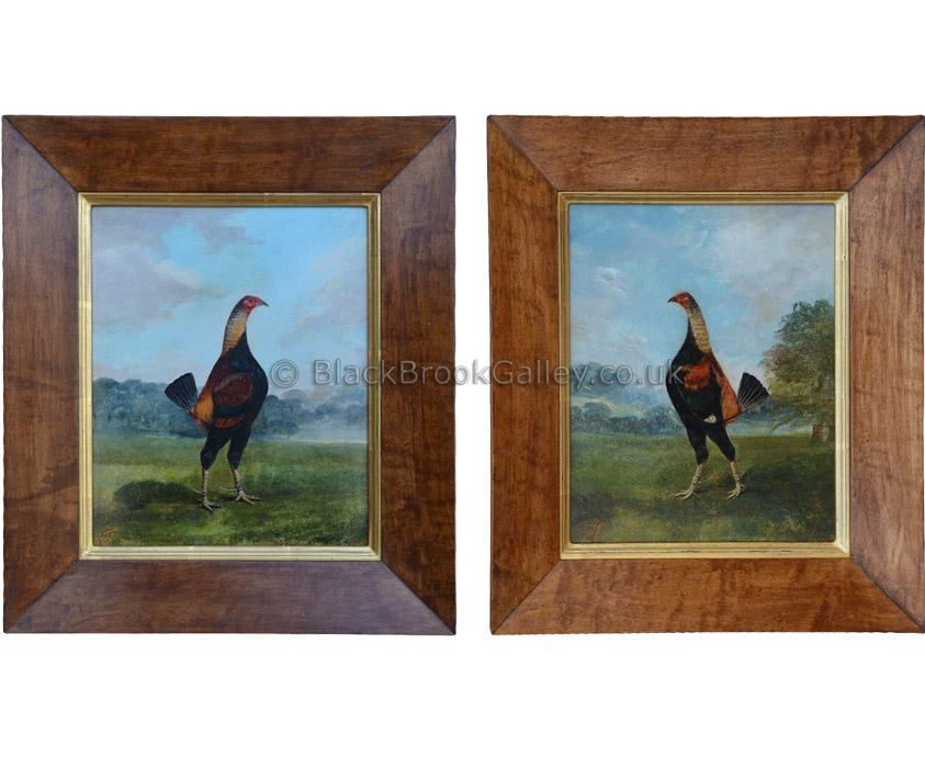 Old English Fighting Cock - Pair by Hilton C. Pratt Antique animal portrait