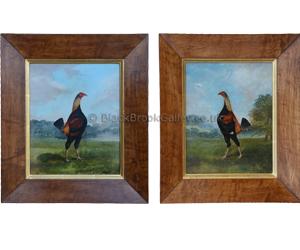 Old English Fighting Cock - Pair by Hilton C. Pratt Naive animal paintings