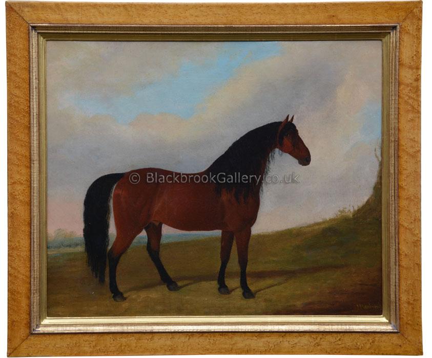 Cleveland bay stallion by J. Paul antique animal portrait